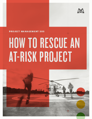 how-to-rescue-an-at-risk-project