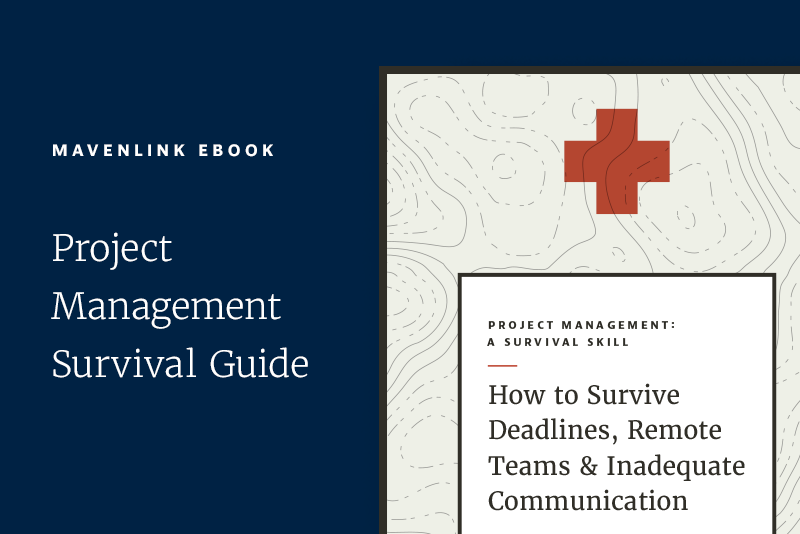 project-managment-a-survival-guide-featured-image.png